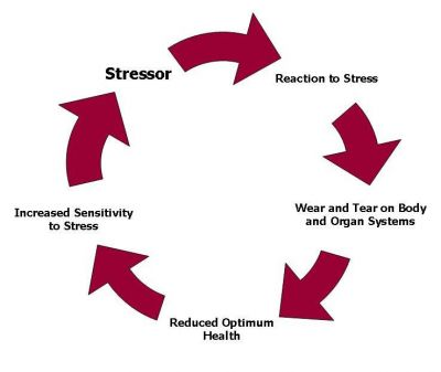 Diagram of chronic stress