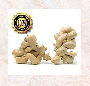 Ginger (Zingiber Officinale ) Therapeutic Essential Oil