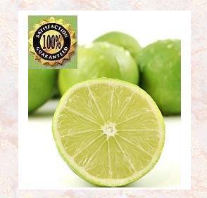Lime Essential Oil (Citrus aurantifolia) Natural Therapeutic Essential Oil